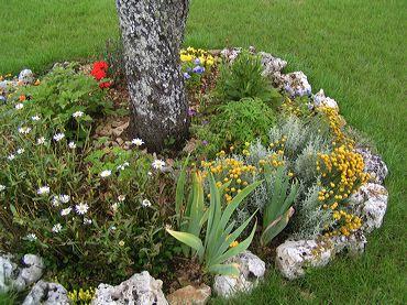 Faire un parterre de fleurs free trucs et conseils with for Bordure autour d un arbre