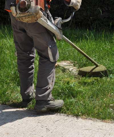 Fiche regarnir pelouse - Tondre la pelouse sans ramasser ...
