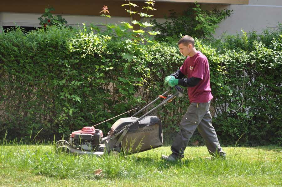 tondre la pelouse bien tondre la pelouse comment bien. Black Bedroom Furniture Sets. Home Design Ideas